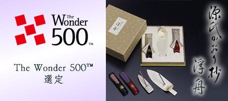 thewonder500tm.jpg