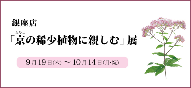 201909ginza_kishoushokubutu.jpg